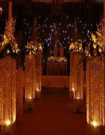 Decorative and Party Lights Supplier