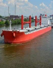 Transport Agents & Bulk Carriers