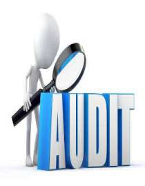 Business & Audit Service