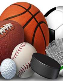 Sports Goods, Toys & Games