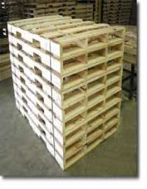 Crates, Trays and Pallets