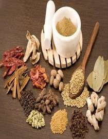Ayurvedic & Herbal Extracts Supplier