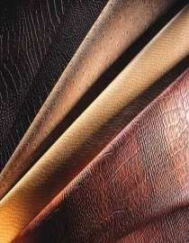Raw and Processed Leather