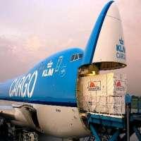 Air Transportation Services