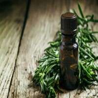 Tea Tree Oils