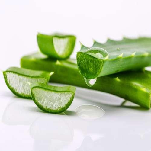 Aloe Extract