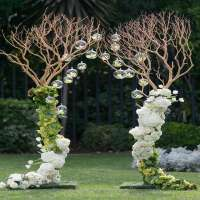 Wedding Gate