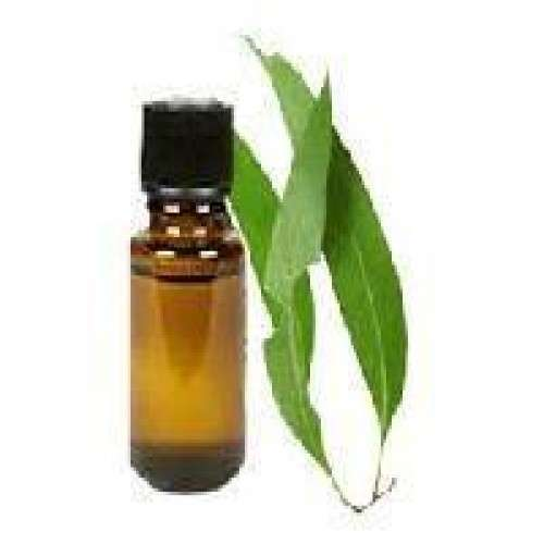 Crude Clove Leaf Oil