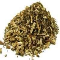 Patchouli Herb