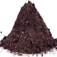 Organic Compost Fertilizer