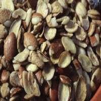 Wild Mango Seed Extract