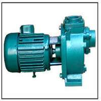 Effluent Transfer Pump
