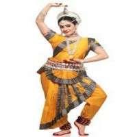 Classical Dance Costume