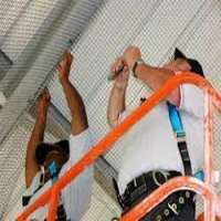 Bird Proofing Services