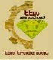 TopTradeWay Mining Group, (TTW)