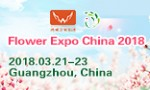 Flower Expo China