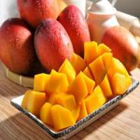 Love mango sweet into your heart Manufacturer