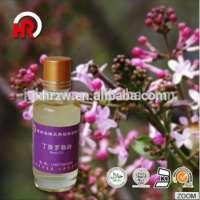 clove basil essential oil