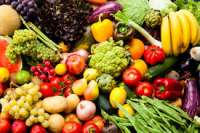 Vegetables Manufacturer