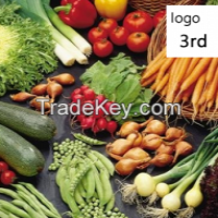 Indian Spices Manufacturer