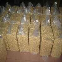 Organic Dry Roasted Cashews Salted