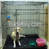 hexagonal wire netting|chicken wire mesh|gabion box|gabion basket Manufacturer
