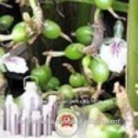 Pure Cardamom Herbal Oleoresin Manufacturer