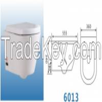distributors wanted wall hung toilet bowl siphon small toilet 6005 Manufacturer