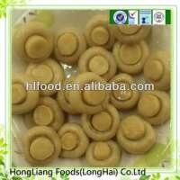 fresh white mushroom Manufacturer