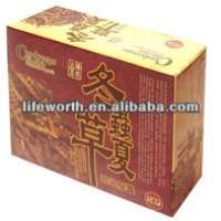 organic green herbal Cordyceps Tea