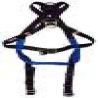 safety harness 2 Drings Manufacturer