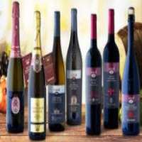 Italian  wines Manufacturer