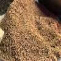 Cumin Seeds Manufacturer