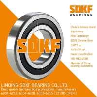 SDKF Brand Auto High Precision Deep Groove Ball Bearing 6304-ZZ-2RS  Manufacturer