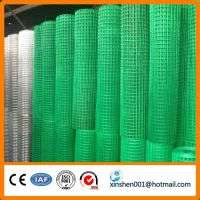 dippde galvanized welded wire mesh Manufacturer