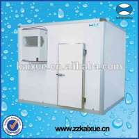 Small refrigerator freezing room frozen meat