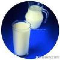 Isolated soy protein beverage and milk Manufacturer
