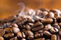 Medium Roasted Arabica Coffee for Private Label Manufacturer