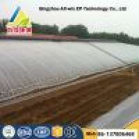 Single Arch Film Sunlight Greenhouse Manufacturer