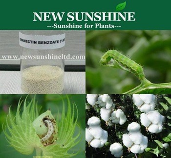 Emamectin benzoate 5 WDG Insecticides Cotton