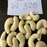 High Quality Cashew Nut with Cheap Price Manufacturer