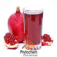 pomegranate tea improve capillary activity