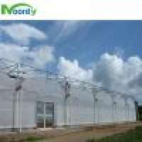 Multi span greenhouse farm Manufacturer