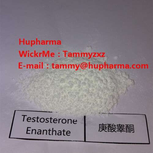 Hupharma Testosterone Enanthate injectable steroids Powder