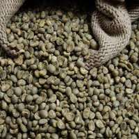 Green Coffee Bean Extract PowderCoffea L Coffea robusta or Coffea arabica