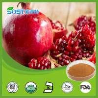 pomegranate tea powder