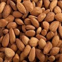 Almond Nuts California Almonds Nonpareil Almonds