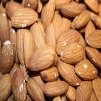 Organic Raw Almond Manufacturer