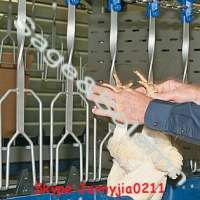 HALAL chicken Poultry slaughterhouse Production butcher Line Boneless meat Hanging Hook of automatic poultry