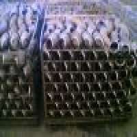 elbows fittings Manufacturer